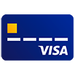Visa credit card.